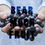 Bear Much Fruit